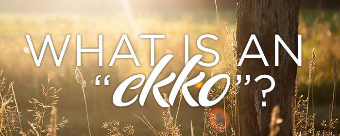 what-is-an-ekko